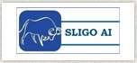 Sligo Ai